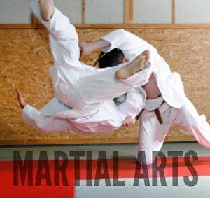 martial arts and mixed martial arts mats from Gym Master Ltd