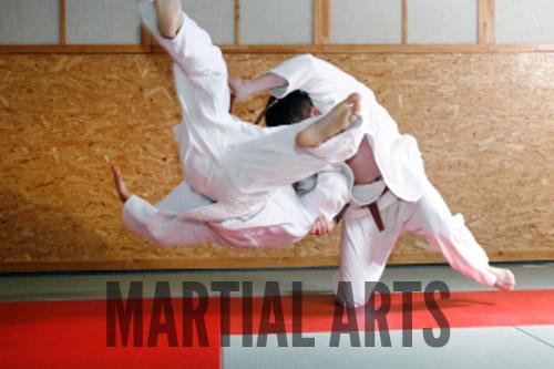 Martial Arts mats and mixed martial arts mats from Gym Master