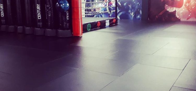 New Martial Arts Mats Refit by Gym-Master